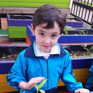 jardin bilingue